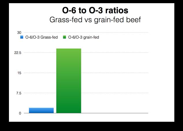 O-6:O-3 ratio beef